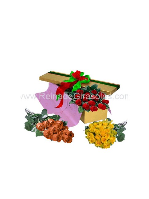 Bouquet de Gerberas x 24